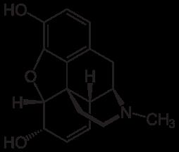 254px-morphin_-_morphine-svg